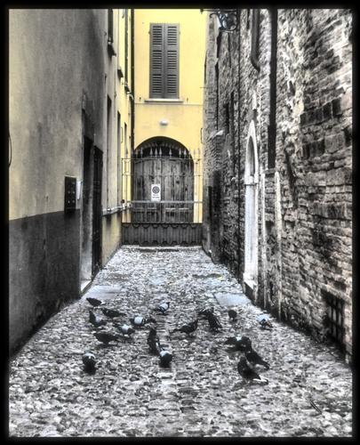 ritrovo - Brescia (1547 clic)