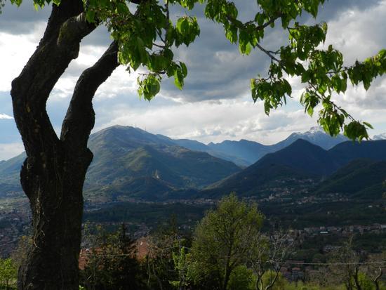 Verso Roncola e resegone - Ponteranica (1074 clic)