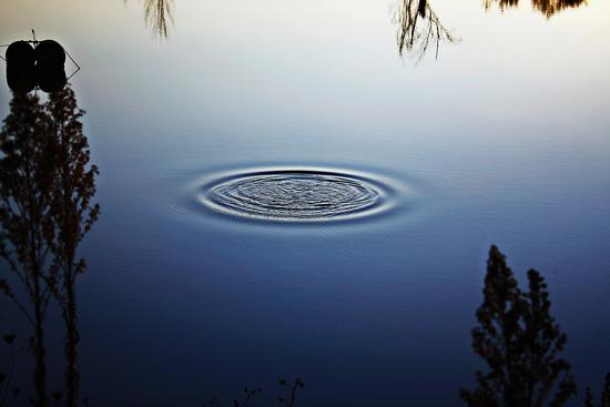 il cerchio magico - Pavullo nel frignano (2325 clic)
