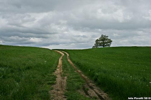 la strada del ritorno..... - Pavullo nel frignano (2570 clic)