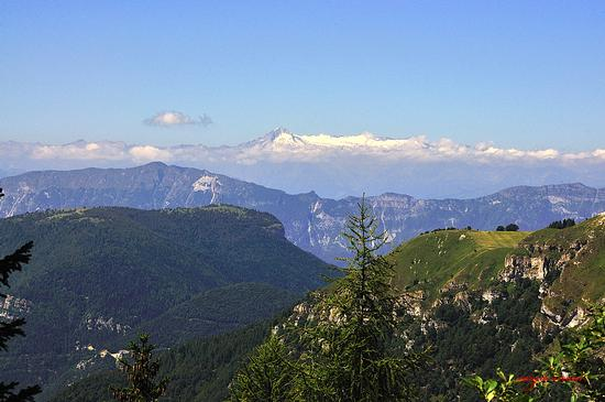 Adamello visto da passo Coe - Folgaria (2933 clic)