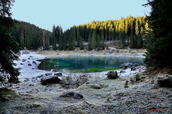 Lago Carezza inizia a ghiacciare - Nova levante (4893 clic)