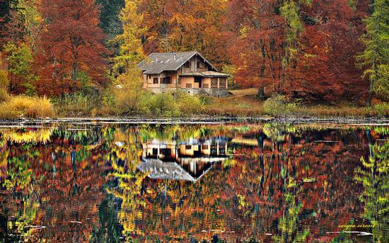 Autunno al lago di Cei - Villa lagarina (11885 clic)