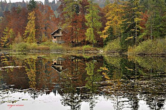 Autunno al lago di Cei foto 3 - Villa lagarina (3726 clic)