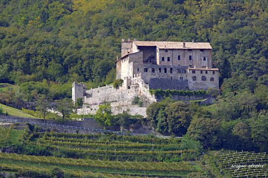 Castel Noarna tra vigneti e boschi visto da Rovereto (1928 clic)