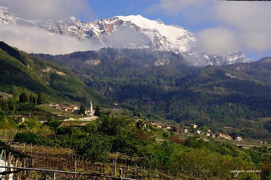 Panorama sullo sfondo il cornetto del Bondone - Nogaredo (1834 clic)