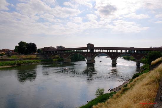 Ponte coperto sul Ticino - Pavia (2176 clic)