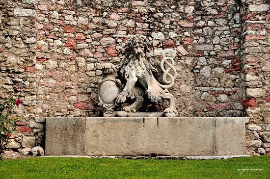 Fontana di palazzo Lodron - Nogaredo (2066 clic)