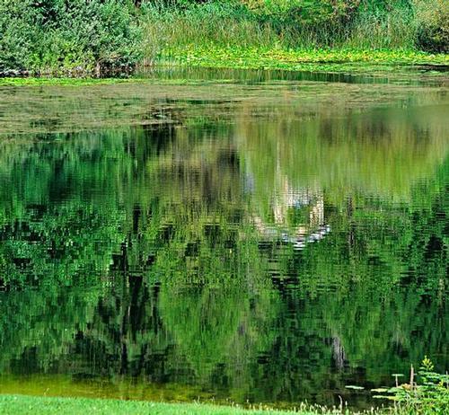 Riflessi al lago - Villa lagarina (1115 clic)
