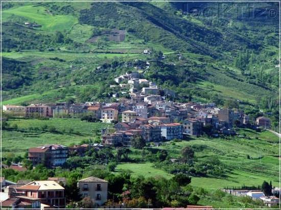 Calcarelli (4758 clic)