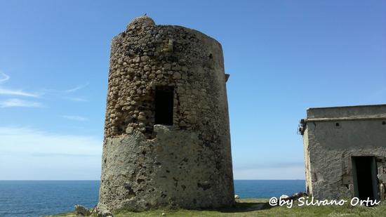 Torre di seu  (789 clic)