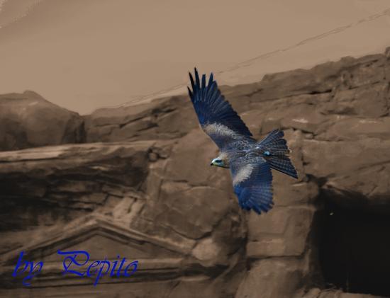 zoom park 14 - Cumiana (1368 clic)