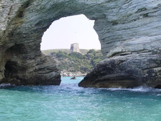 Vieste particolare stupendo della costa. (2147 clic)