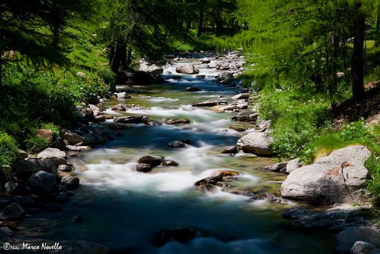 Il torrente... - Ceresole reale (1257 clic)