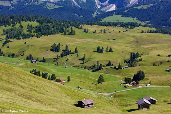Alpe... - Alpe di siusi (1840 clic)