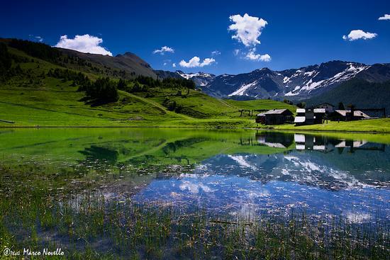 Lago LOD - Chamois (11472 clic)