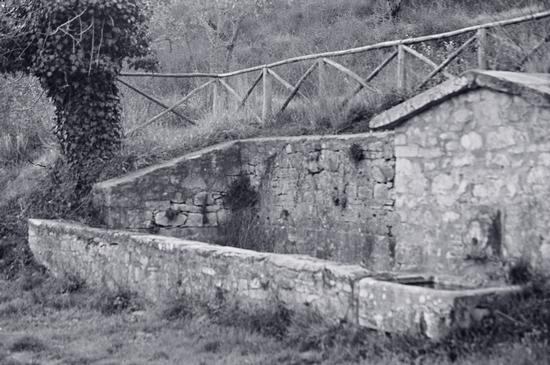 vecchio lavatoio - Civitella in val di chiana (2362 clic)