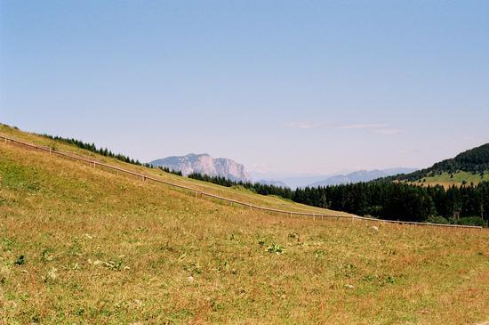 prati - Monte bondone (1408 clic)
