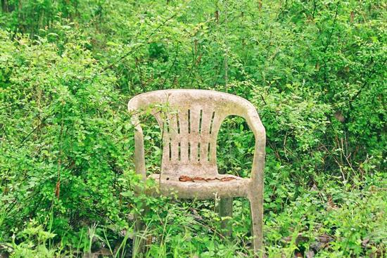 seduta nel bosco - Pratovecchio (1933 clic)