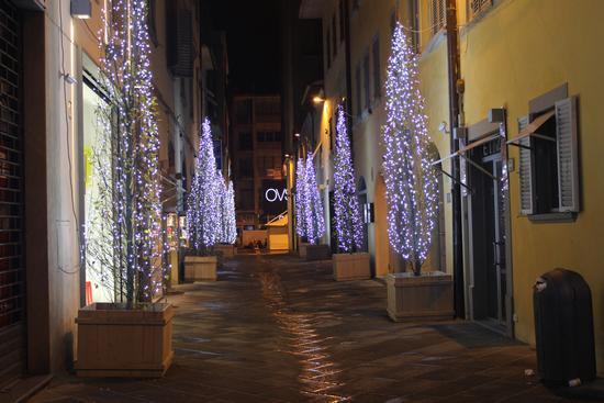 luminarie - Arezzo (1617 clic)