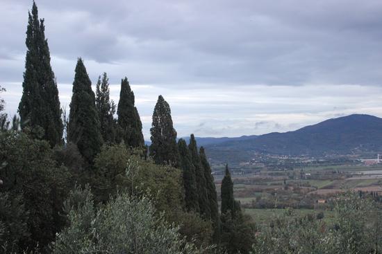panorama toscana - Battifolle (1502 clic)