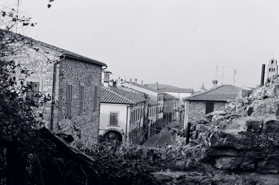 il paese - Civitella in val di chiana (1485 clic)