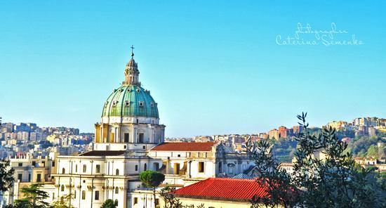 Capodimonte - Napoli (783 clic)