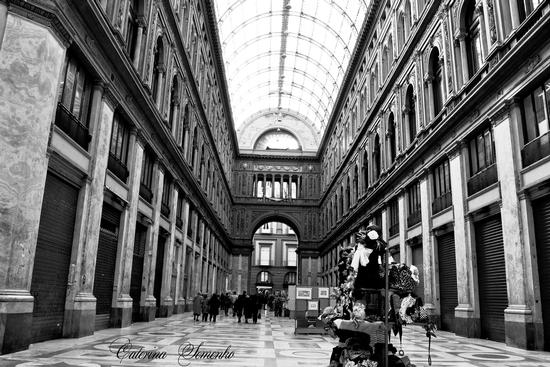 - Napoli (769 clic)