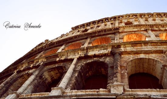 - Roma (1488 clic)