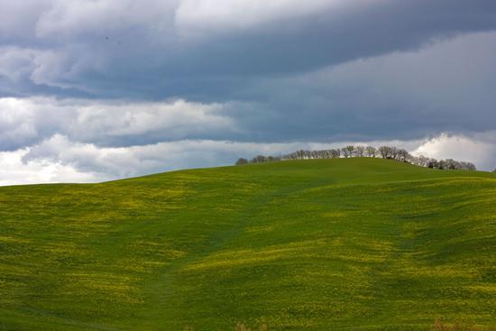 colline - RADI - inserita il 28-May-12