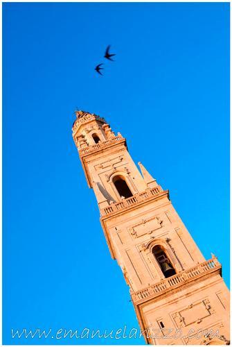 Il campanile del Duomo di Lecce, Emanuela Rizzo Fotografo Lecce (1177 clic)