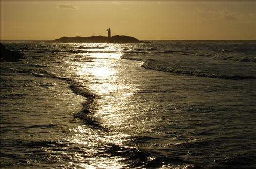 Isola di Licosa - Castellabate (3320 clic)