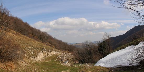 Trocchi del Monte San Vicino - San severino marche (843 clic)