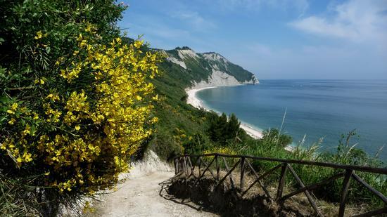 discesa a mezza valle  - Ancona (2315 clic)