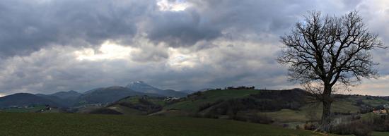 Dalle colline alla montagna - Cingoli (891 clic)