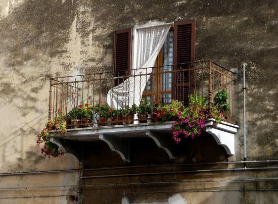 balcone fiorito - Camerano (1211 clic)
