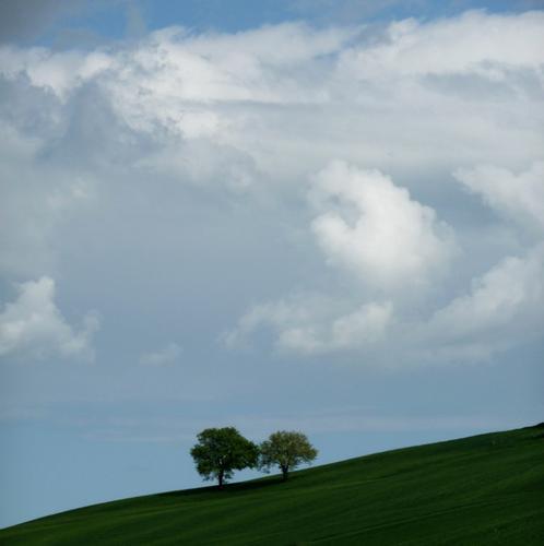 i solitari - Osimo (995 clic)