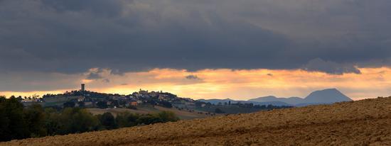- Osimo (635 clic)