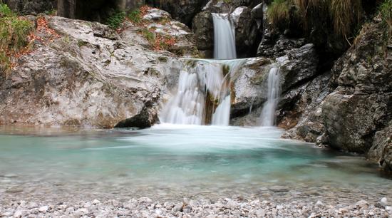 Il paradiso a due passi da casa... - Gazzaniga (1081 clic)