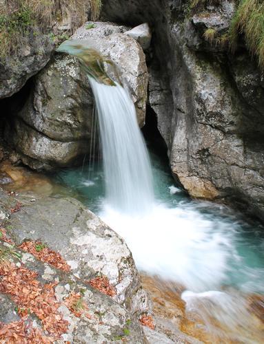 Acqua... - Gazzaniga (1023 clic)
