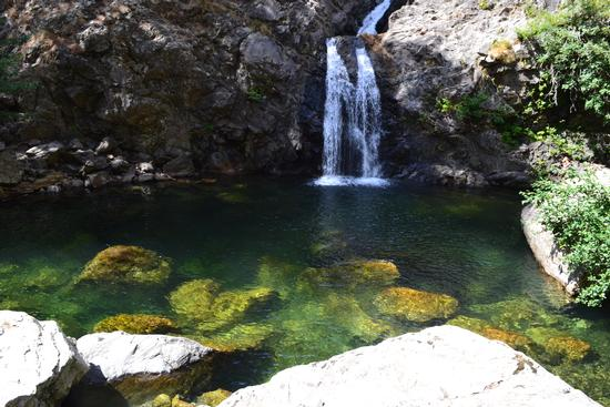 vasca delle cascate - Gambarie (3647 clic)