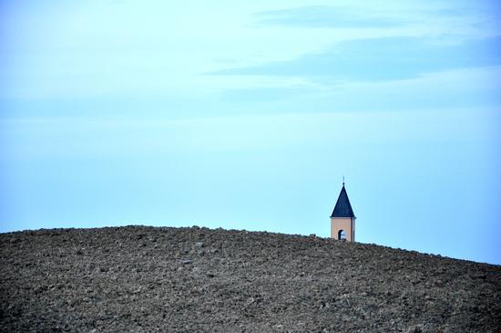 ...come un girasole... - San giorgio di pesaro (1480 clic)