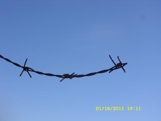 liberta' spezzate -  - inserita il 04-Mar-13
