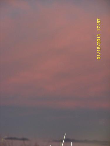 luce (583 clic)