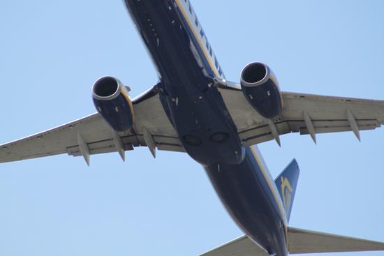 Dettaglio aereo - Pisa (1268 clic)