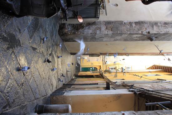 Vicolo di Pisa (787 clic)