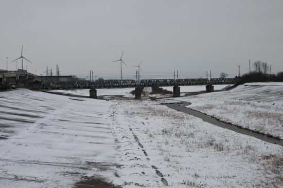 La neve  - Pontedera (1123 clic)