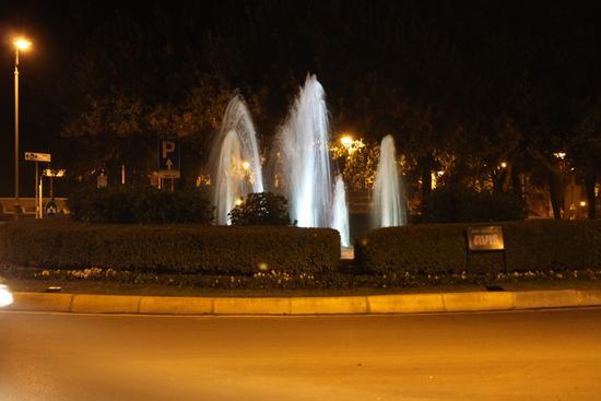 Fontana - Pisa (982 clic)