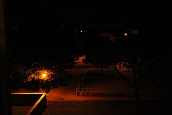 I giardini di notte - Cascina (1010 clic)
