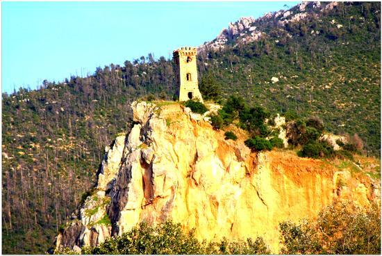 La torre di Caprona - Cascina (1432 clic)